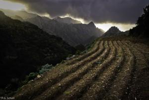 Paysage de las Carboneras, Tenerife, Canaries