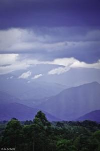Brumes et montagnes du Cauca, Colombie