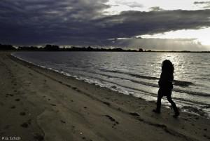 l'hiver sur les plages du golfe du Morbihan, France.