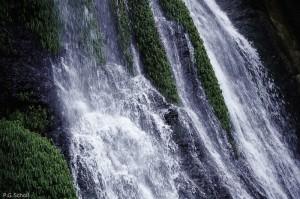 Végétation et chutte d'eau en Colombie