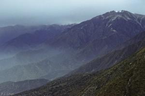Sur les flancs du Volcan Huaynaputina, au dessus d'Omate, Pérou.