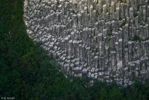 Orgues basaltique et forêt, Roche Sanadoire, Auvergne, France.