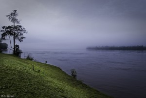 Les rives du fleuve Maroni, Guyane française.