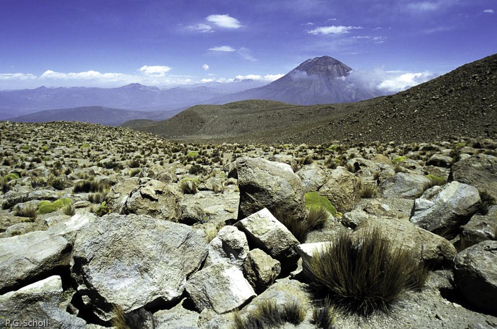 Le volcan Misti vu depuis le Pichu-Pichu, Pérou
